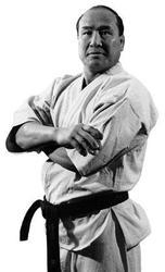 Личный домашний тренер по каратэ kyokushinkai