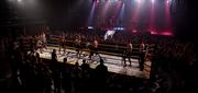 Профессиональная Бойцовская Лига ищет партнёров